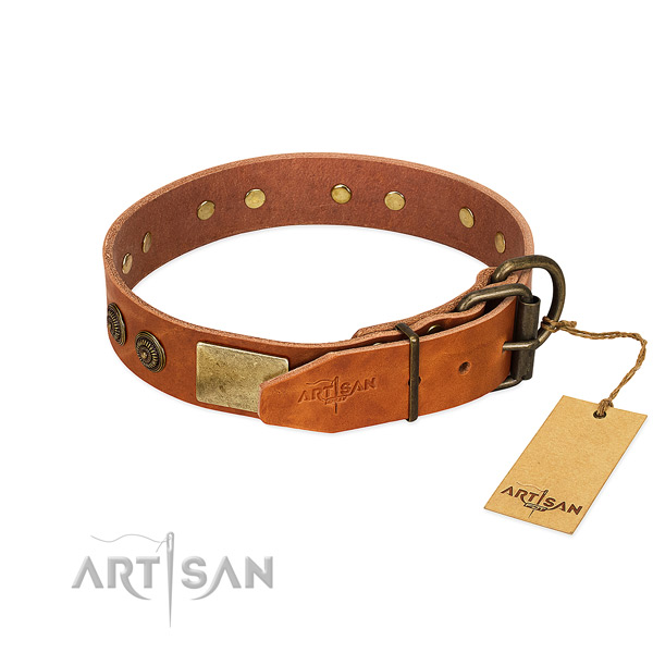 Durable D-ring on full grain leather collar for daily walking your dog