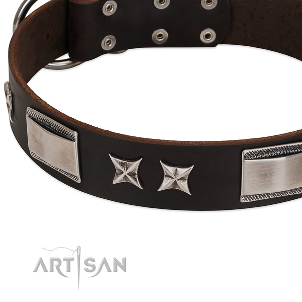 Flexible full grain leather dog collar with rust resistant hardware