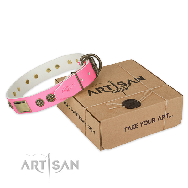 Durable decorations on dog collar for everyday use