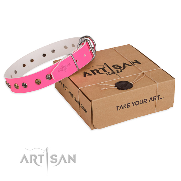 Daily use dog collar with Inimitable corrosion resistant adornments