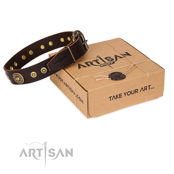 Full grain natural leather dog collar made of quality material with rust resistant buckle