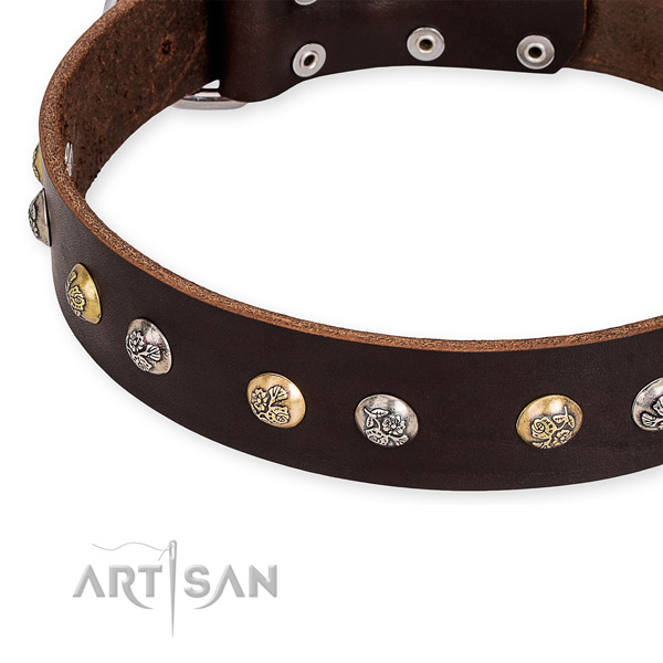 Full grain leather dog collar with top notch strong embellishments