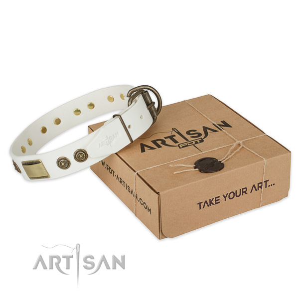 Strong buckle on natural genuine leather dog collar for walking