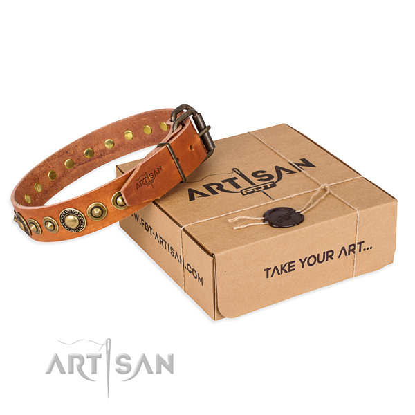 Top notch full grain leather dog collar handcrafted for daily walking
