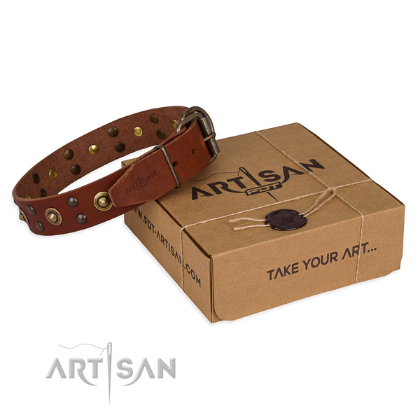 Rust resistant buckle on full grain leather collar for your attractive canine