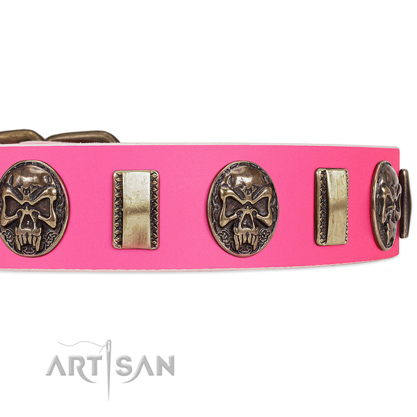 Corrosion proof buckle on genuine leather dog collar for your four-legged friend
