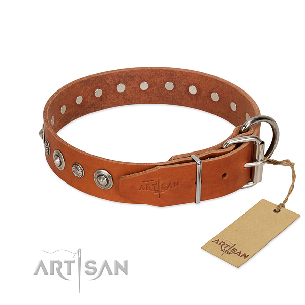 Best quality full grain natural leather dog collar with significant adornments