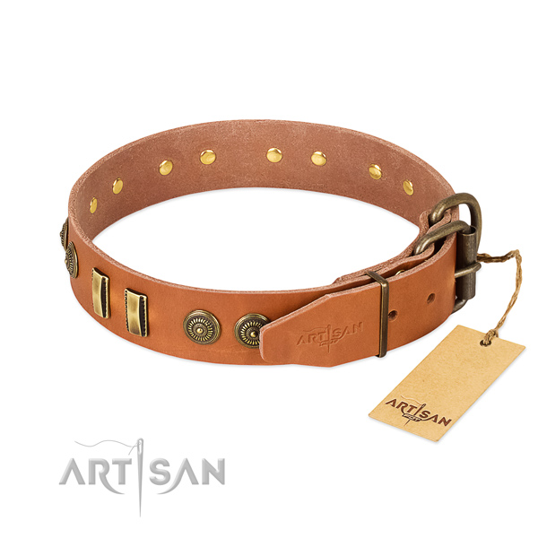 Corrosion proof fittings on leather dog collar for your canine