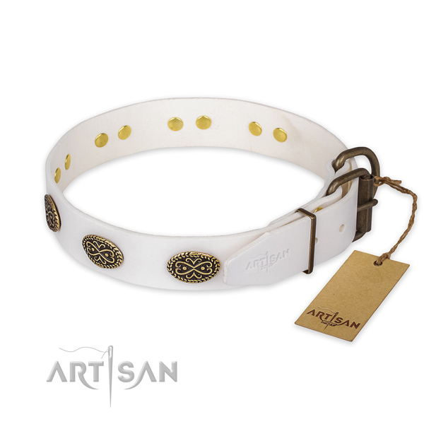 Strong buckle on genuine leather collar for daily walking your pet