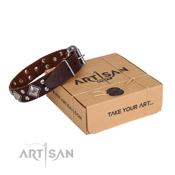 Easy wearing dog collar with Unusual rust resistant adornments