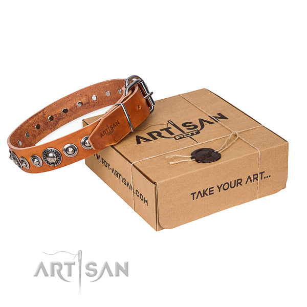 Full grain leather dog collar made of quality material with strong fittings
