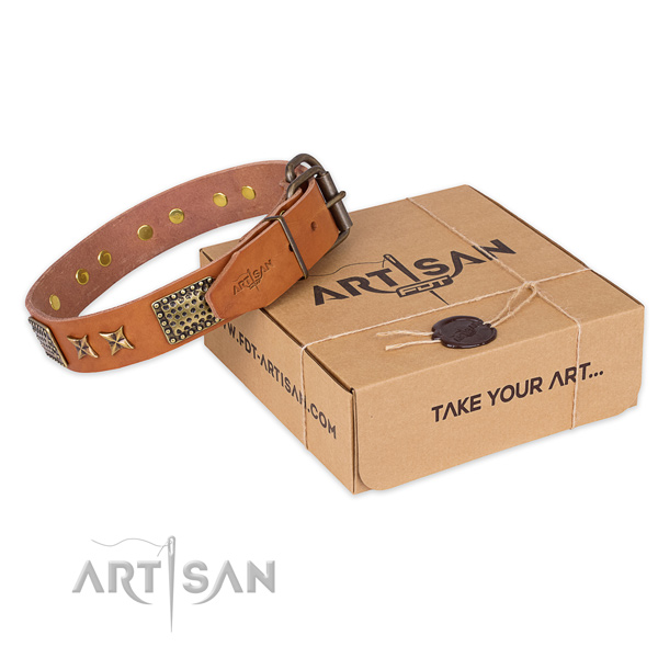 Corrosion proof traditional buckle on full grain natural leather collar for your beautiful pet
