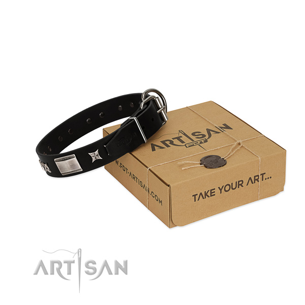 Top rate full grain natural leather dog collar with rust resistant traditional buckle