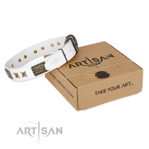 Durable buckle on full grain leather collar for your lovely pet