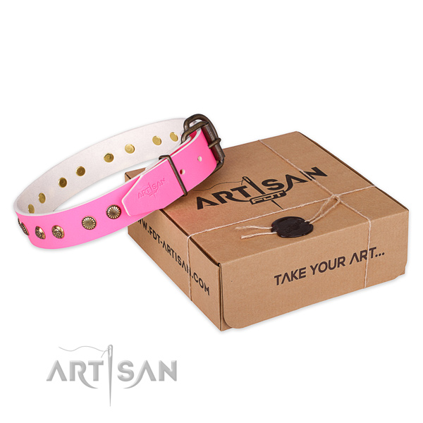 Rust resistant traditional buckle on full grain genuine leather collar for your beautiful doggie