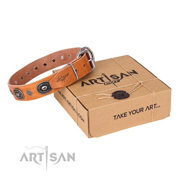 Reliable full grain leather dog collar made for fancy walking
