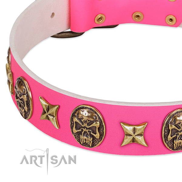Full grain genuine leather dog collar with unusual studs