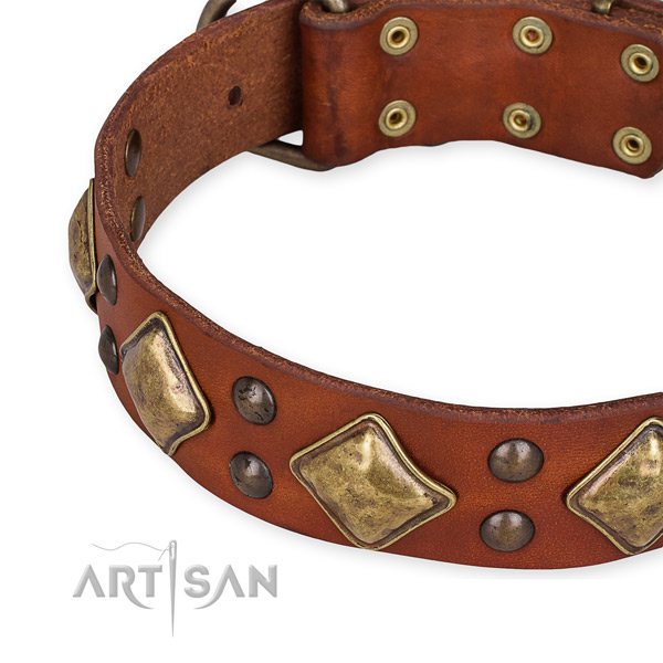 Full grain leather collar with rust resistant traditional buckle for your lovely doggie