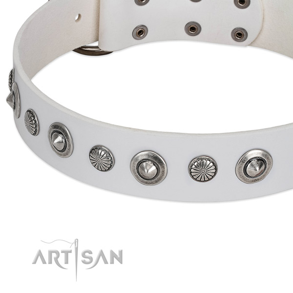 Full grain genuine leather collar with corrosion proof fittings for your attractive doggie