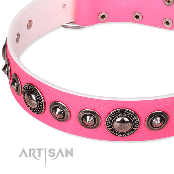 Everyday use embellished dog collar of reliable full grain genuine leather