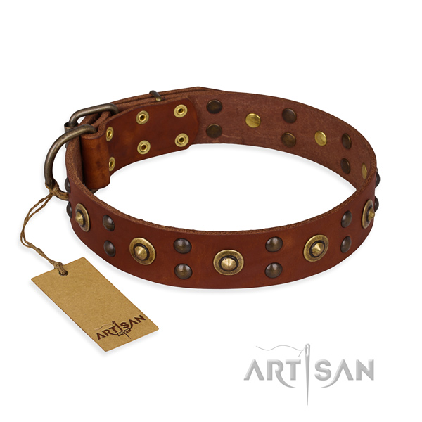 Exquisite leather dog collar with corrosion resistant fittings
