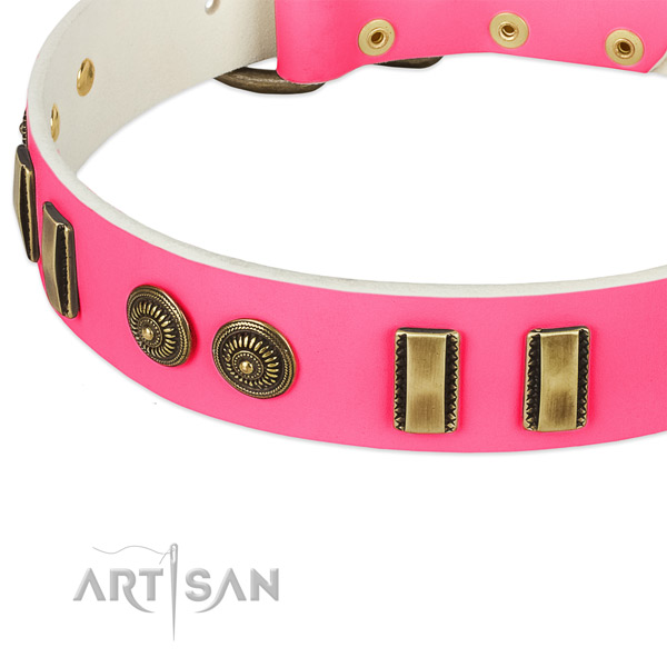Rust-proof fittings on full grain leather dog collar for your pet