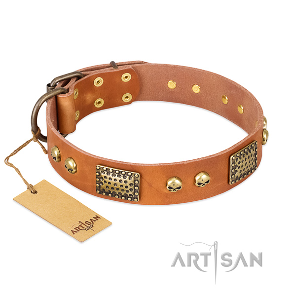 Easy adjustable full grain leather dog collar for stylish walking your four-legged friend