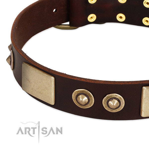 Durable studs on full grain natural leather dog collar for your doggie