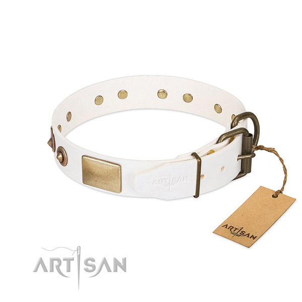 Durable adornments on full grain genuine leather dog collar for your dog