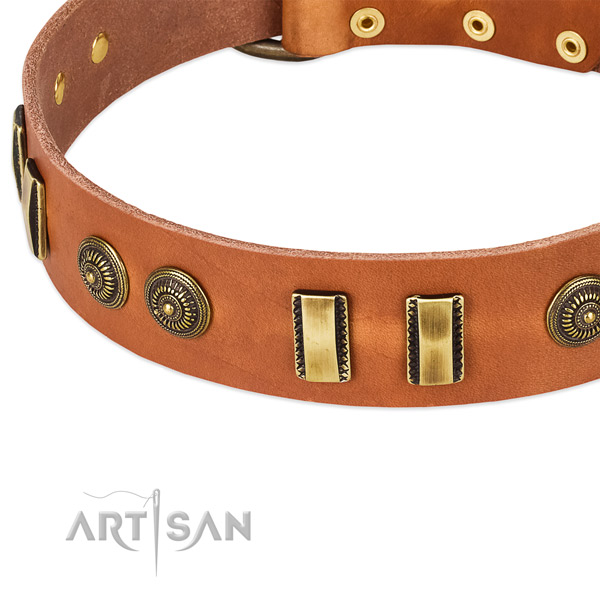 Durable embellishments on full grain natural leather dog collar for your doggie