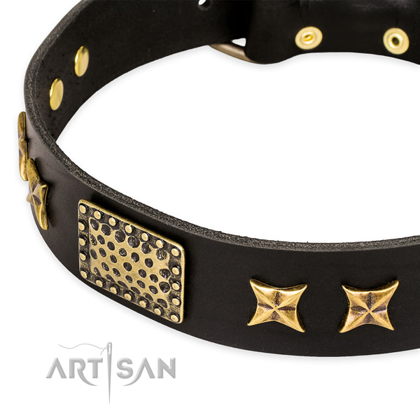 Full grain genuine leather collar with strong D-ring for your lovely canine