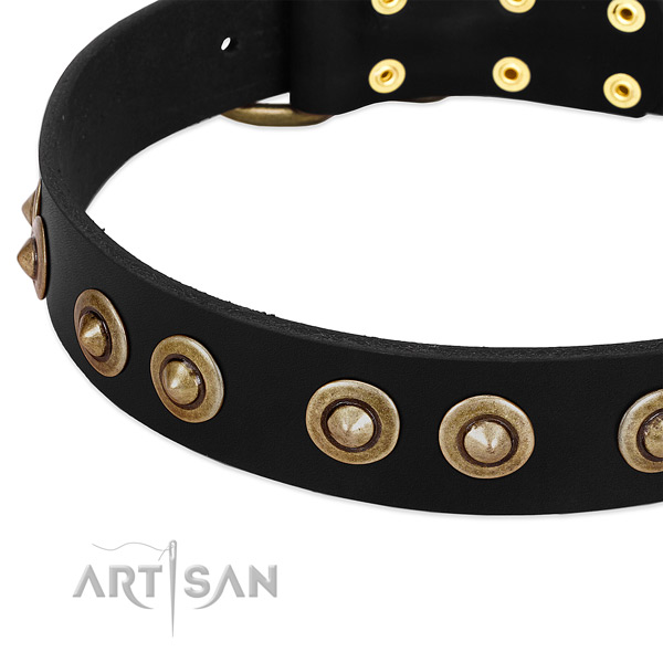 Corrosion proof embellishments on full grain genuine leather dog collar for your canine