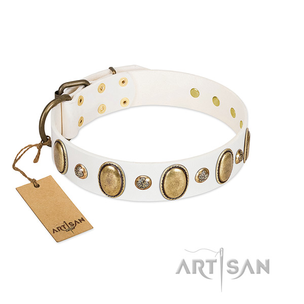 Natural leather dog collar of reliable material with fashionable embellishments