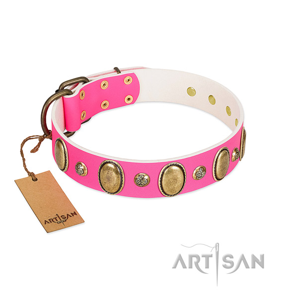 Daily walking soft leather dog collar with embellishments