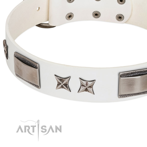 Top notch leather dog collar with corrosion resistant D-ring