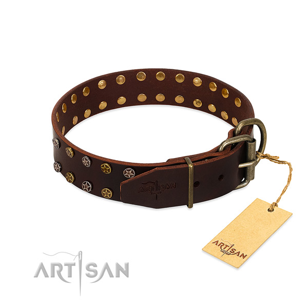 Walking genuine leather dog collar with unusual embellishments