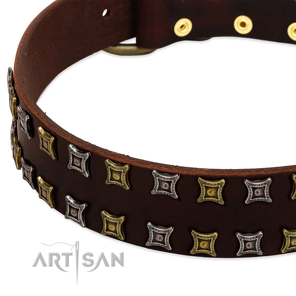 Quality natural leather dog collar for your stylish doggie