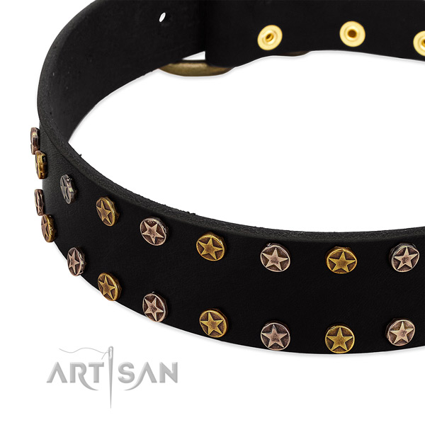 Significant embellishments on genuine leather collar for your canine