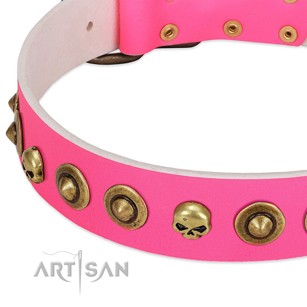 Stylish studs on full grain leather collar for your canine