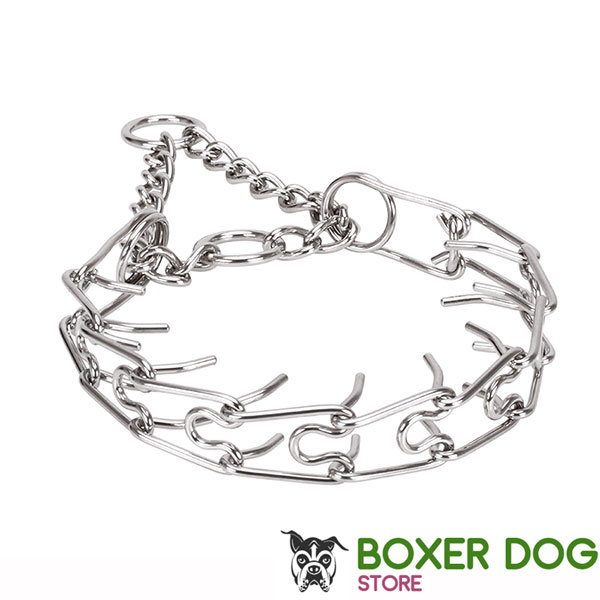Corrosion resistant dog prong collar with stainless steel removable prongs