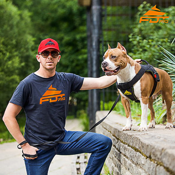 Men T-shirt of Reliable Cotton with Orange Logo for Dog Trainers