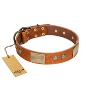 """Ancient Treasures"" FDT Artisan Tan Leather Boxer Collar with Antiqued Plates and Studs"