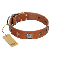 """Lucky Star"" FDT Artisan Tan Leather Boxer Collar with Silver-Like Embellishments"