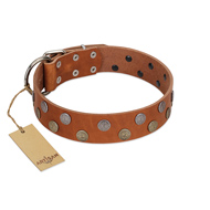 """Ancient Symbol"" Trendy FDT Artisan Tan Leather Boxer Collar with Silver- and Gold-Like Studs"