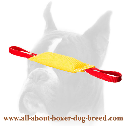 French Linen Boxer Bite Tug for Dog Training
