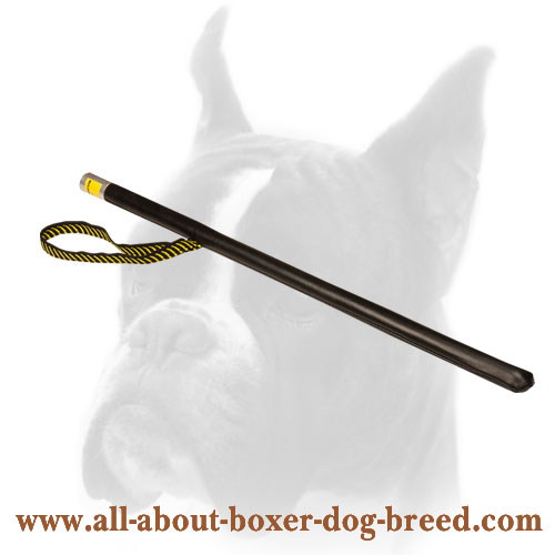 Dog Stick for Agitation Training