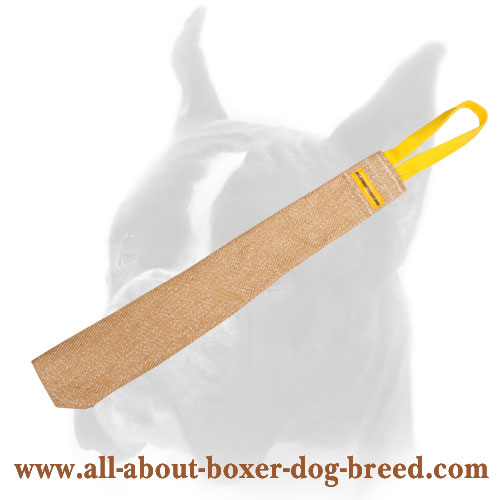 Boxer Puppy Soft Bite Rag For Training with a Small Loop