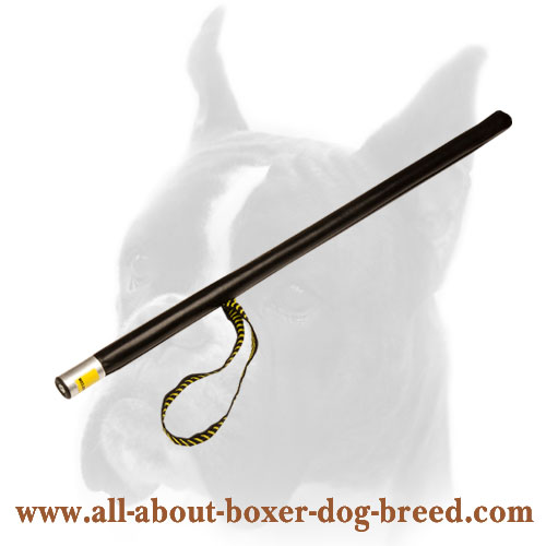 Training Plastic Dog Stick