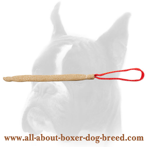 Boxer pocket toy with handle made made of jute