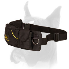 Nylon Dog Pouch for Boxer Training
